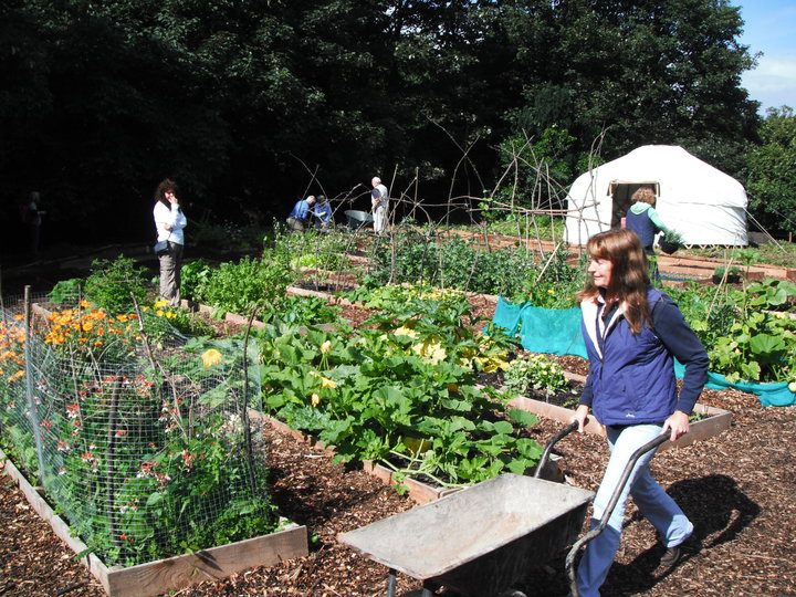 Royal Edinburgh Community Garden On Telly Tonight 18 August Shandon Local Food Group