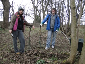 In March, we made a new path through the woodland garden.